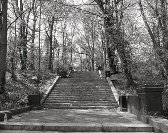 Beautiful stairs in Prospect Park
