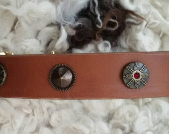 Dog collar, leather collar with decorative rivets