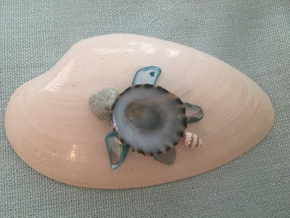 Seashell Turtle Shell Turtle Seashell Decor Sea Turtle