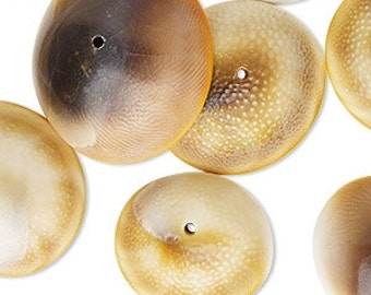Shell Beads, Eye Of Shiva, Natural, Browns, Golden, Ivory, Well Being, 16mm to 25mm, 5 each, D898