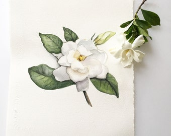 Giclée Print. White Gardenia. Botanical Painting.  Hand deckled Edges. Arches Watercolor Paper