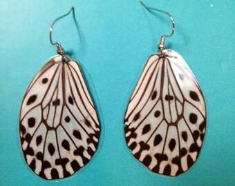 Real paper kite butterfly wing earrings