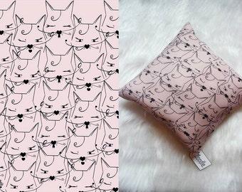 Cat Pillow|Cool Cat|Kitten Pillow|Pillow|Cat|Cat Picture|Kitten|Cushion