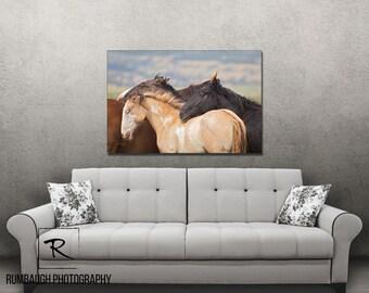 WIld horse art-'Simplictiy' Canvas print
