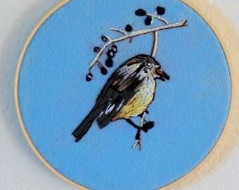Meadow Song Bird