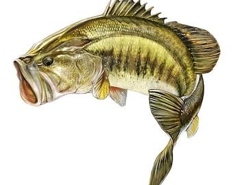 Fishing Decal - Jumping Largemouth Bass