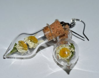 Real Dried Daisy Feverfew Magical Flower Vial Earrings