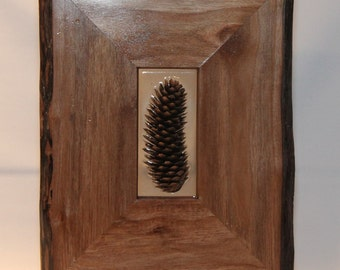 Unique Walnut Pine Cone Art with Display Stand.  Live Edge