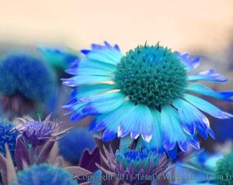Bright Blue Flowers downloadable digital art