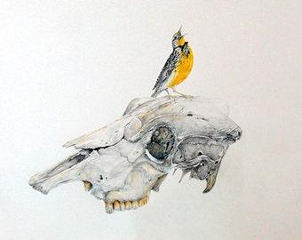 Life: Mockingbird