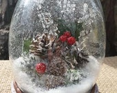 Holly Berry Snow Globe