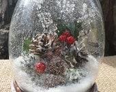 Holly Berry Snow Globe