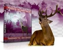 40 Deers Transparent PNG Animal Overlays, Photo Overlays, Photoshop Overlays, Photography Backgrounds