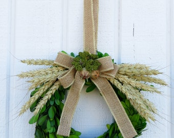 Spring Wreath, Boxwood Wreath, Small Boxwood Wreath, Small Boxwood Wreath with Burlap Bow, Boxwood with Burlap, Spring Boxwood Wreath