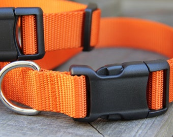 LIMITED** Medium Orange Nylon Dog Collar