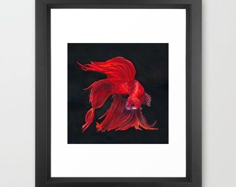 """Red Siamese Fighting Fish - Watercolor Painting Art Print (8.5x11"""")"""