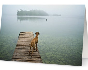 "Photo Card, Greeting card, Blank card  ""Clarity"""