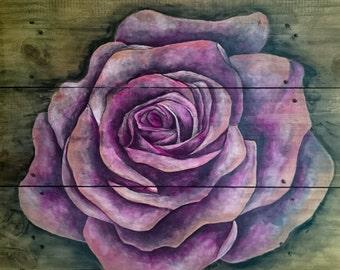 Rose Desires II