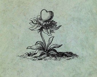 A flower with a Heart - Antique Style Clear Stamp