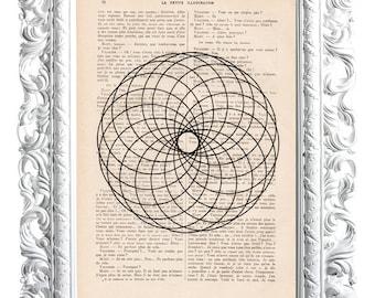 Spiral flower. Print on French publication of illustration. 28x19cm.