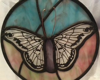 White Butterfly with Pink and Blue