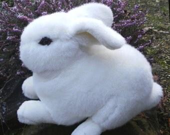 Large white Bunny / rabbit
