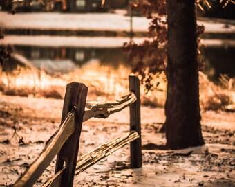 Frozen Winter Days