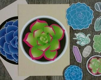 Succulent Art Pack