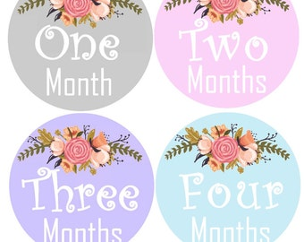 Baby Girl Month Stickers Monthly Baby Stickers Milestone Stickers Bodysuit Monthly Stickers Baby Stickers Bodysuit Milestone Stickers