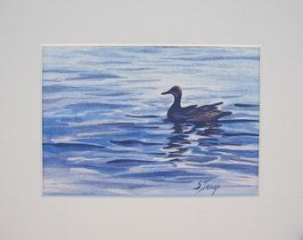 Blue Duck by Sandra Jessop Original watercolor matted