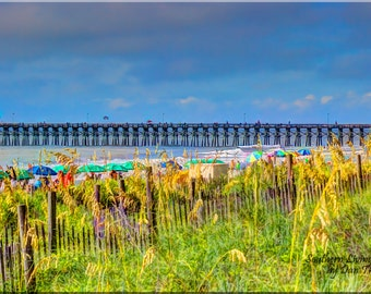 Myrtle Beach, Oceanview, Seaoats, Bright Colors, Fence, Sand Dunes, Blue Skies