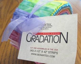 Triple-Dyed Gradation Balis Pinwheel from Benartex