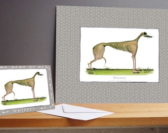 Fun Whippet Gift Print and greeting card