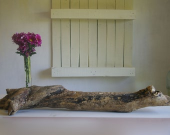 Large Driftwood as vase decorative Driftwood sea wood