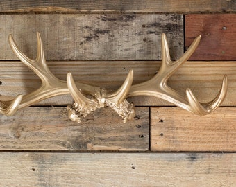 Gold Antler Wall Mount/Jewelry Holder