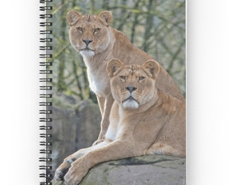 Lion Spiral Notebook ~ Nature Photography Journal ~ Gift Idea for Animal Lover ~ Big Cat Notebook ~ Natural Tones Notepad ~ Tan Green Diary