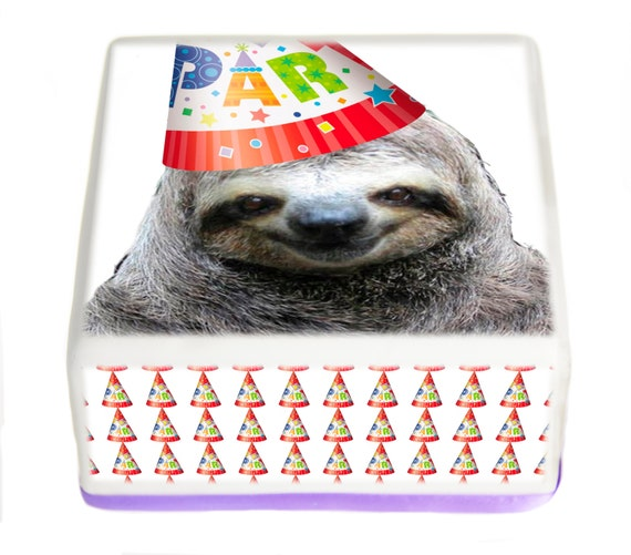 Sloth in party hat - photo#13