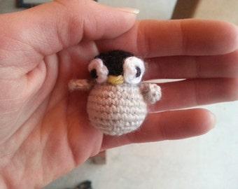 Baby penguin