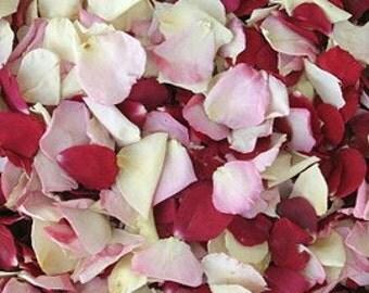Bridal Bliss Petals. Wedding Decoration. Flower Petals. Rose Petals. Real Rose Petals. Confetti. Flower Confetti. 30 cups. Petals. USA