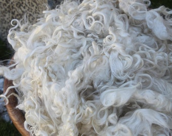 3.05oz of beautiful and so soft New Zealand Mohair Fleece. Spin it, felt it or create an art masterpiece  with these gorgeous curls.