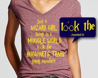 Harry Potter meets Journey