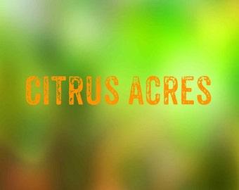 "Bath Bomb- ""Citrus Acres"""