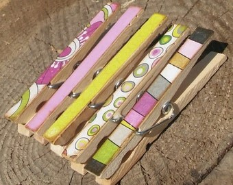 Retro Bliss Clothespin Magnets Clips Set of 5 Green White Purple Gray