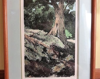 "Rare Dale Rayburn Landscape Etching ""Seclusion 1"" signed"