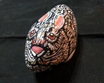 Bunny Rock 1