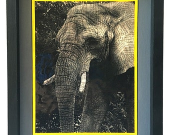 Elephant Face from the Nature Series - Print 2