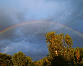 Poster Rainbow Outdoor Photography Print, Home Decor, Rainbow after Storm, Sky Photography, Nature, Sky, Serene Photo, Trees, Outdoors