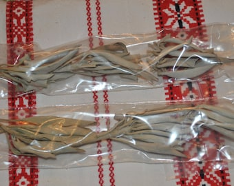 Purifying Sage Leaves for Smudging