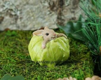 Miniature Dollhouse FAIRY GARDEN ~ Bunny Rabbit in Cabbage  ~ NEW