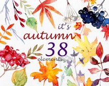 It's Autumn - watercolor clipart, commercial use digital floral leaves leaf fall autumnal foliar foliage leafy red yellow orange forest png